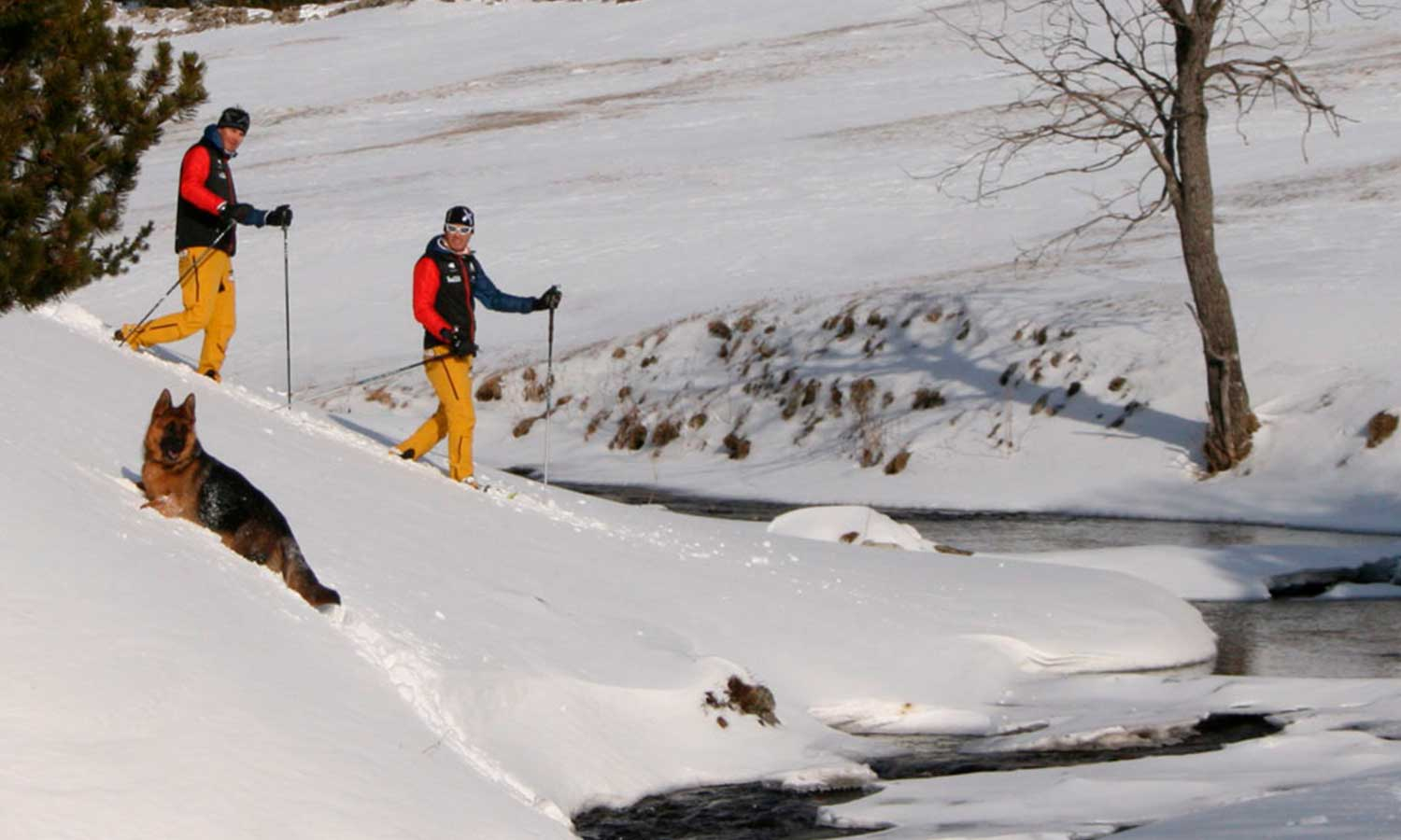 Hermitage Mountain Residences passeigs amb raquetes de neu