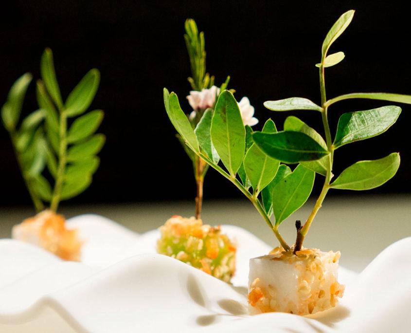 Restaurante Koy Hermitage | Alta cocina japonesa en Andorra